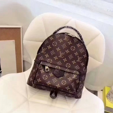 Рюкзак Louis Vuitton Monogram